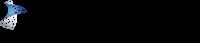 DPM 2007